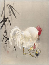 Wall Stickers  Rooster and Hen with Chicks - Watanabe Seitei