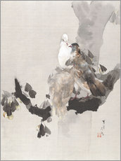 Gallery print  Pigeons in a Tree - Watanabe Seitei