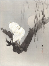 Gallery Print   egrets in a tree at night  - Watanabe Seitei