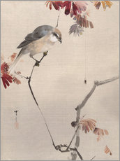 Wall Stickers  Bird on Branch Watching Spider - Watanabe Seitei
