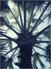 Wall sticker  Tropical tranquillity - Angelo Cerantola