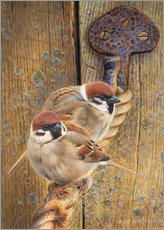 Wall sticker Two fat sparrows