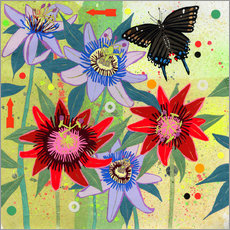 Gallery print  Black swallowtail and passion flowers - Ikon Images