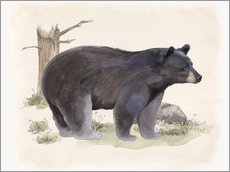 Beth Grove - Wilderness Collection Bear