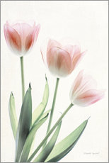 Wall Stickers  Light and Bright Floral II - Elizabeth Urquhart