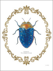 Gallery print  Adorning Coleoptera V - James Wiens