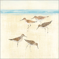 Gallery print  Sandpipers Square II  - Avery Tillmon