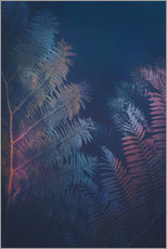 Wall Stickers  Abstract Fern - Pascal Deckarm