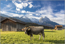 Wall sticker  Cow in green alpine pastures - Roberto Moiola