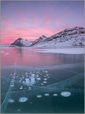 Wall sticker  Ice bubbles in Lake Bianco, Switzerland - Roberto Moiola