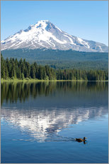 Gallery print  Mount Hood in the cascade chain - Martin Child