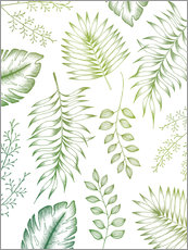 Wall Stickers  Tropical Leaves  - Barlena