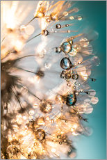 Wall sticker  Dandelion summer in turquoise gold - Julia Delgado