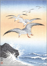 Wall sticker  Five seagulls over stormy sea - Ohara Koson