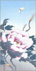 Gallery print  Peony with butterfly - Ohara Koson