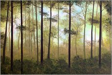 Gallery print  Forest morning - Herb Dickinson