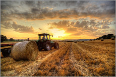 Wall sticker  Harvested Cornfield Sunset - Simon West