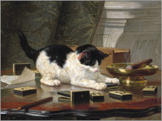 Gallery print  The Cat at Play - Henriette Ronner-Knip