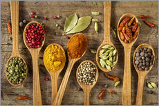 Gallery Print  Colorful spices in wooden spoons - Elena Schweitzer