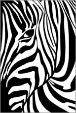 Radu Bercan - Black And White Zebra Portrait