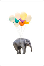 Wall sticker  Elephant with colorful balloons - Radu Bercan