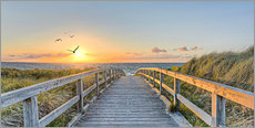 Wall Stickers  Footbridge in the Baltic Sea dunes - Art Couture