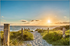 Gallery print  Path through the dunes, Baltic Sea - Art Couture