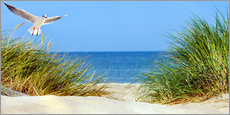 Acrylic print  Sand dune, Baltic Sea - Art Couture