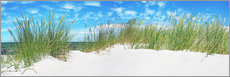 Alu-Dibond  Dunes panorama of the Baltic Sea - Art Couture