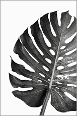 Aluminium print  Black monstera 03 - Art Couture