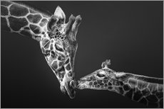 Acrylic print  Bond of love - Manuela Kulpa