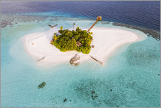 Premium poster Aerial view of dream island in the Maldives