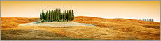 Poster  Cypress trees in Tuscany - Art Couture