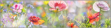 Canvas print  Tender poppy in pastel - Art Couture