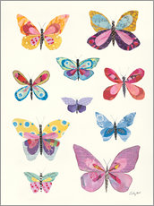 Poster  Butterfly Charts II - Courtney Prahl