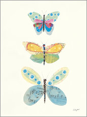 Canvas  Butterfly Charts IV - Courtney Prahl