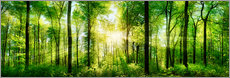Canvas print  Spring forest - Art Couture