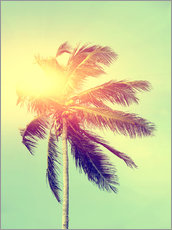 Premium poster A palm in the sunlight