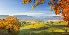 Premium poster Autumn in Bavarian with Zugspitze in Background - Murnauer Moos