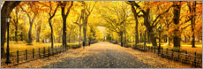 Acrylic glass  Central Park in Autumn - Art Couture