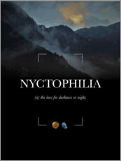 Premium poster Nyctophilia Definition
