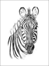 Wood print  Zebra Sketch