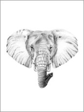Wood print  Elephant Sketch