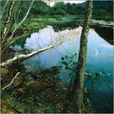 Acrylic print  Summer night - Eilif Peterssen