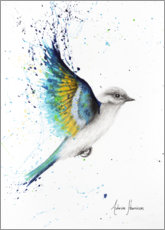 Premium poster Blue Wing Bird