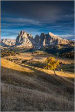 Premium poster Sunset on the Alpe di Siusi the Dolomites