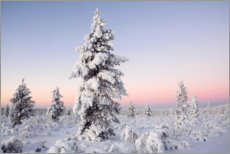 Gallery print  Winter landscape in Finland - GUGIGEI