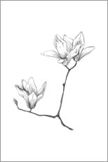 Wall Sticker  Magnolia - RNDMS