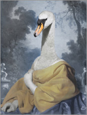 Premium poster  Beautiful swan - Philippe Tyberghien