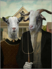 Acrylic glass  American Goat - Philippe Tyberghien